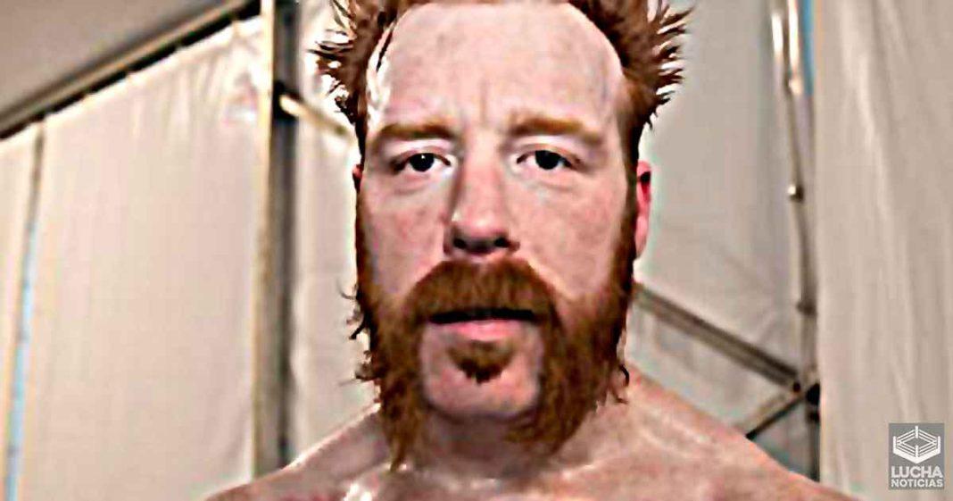Sheamus debe aprender a perder sus luchas según Arn Anderson