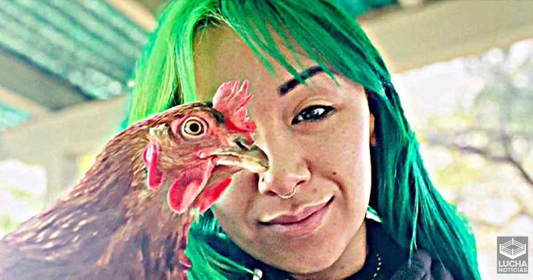 Se muere el pollo de Shotzi Blackheart