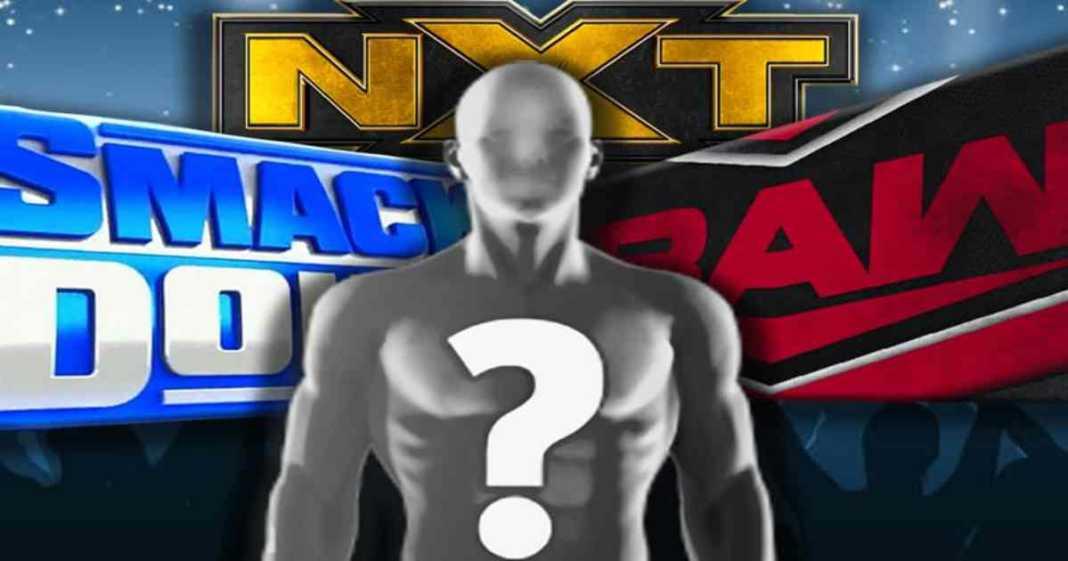 Gran Superestrella de NXT probablemente será ascendida pronto