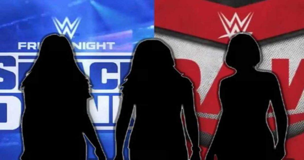 WWE cancela por completo los planes por una interesante agrupación femenina