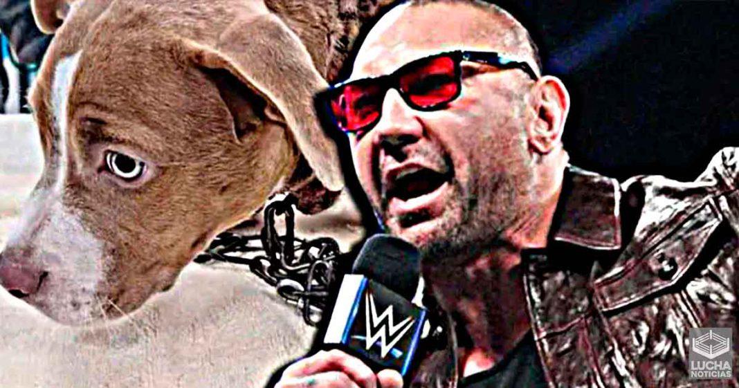 Batista ofrece mucho dinero para atrapar a maltradador de perros
